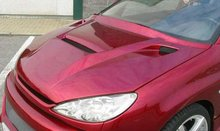 Capo Delantero Lester para Peugeot 206