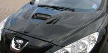 Entrada de Aire de Capo Lester para Peugeot 308 9/07-Type M